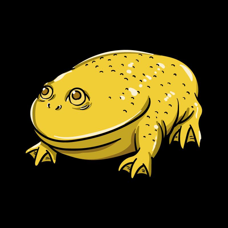 黄金ガエルのイラスト